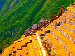 On the Edge (Stavros iLIADIS) Tags: trees house mountains color colour tree art peru nature yellow machu picchu inca america buildings landscapes miniature ancient honeymoon artistic cusco olympus scene unesco andes getty monuments aguas diorama calientes 2011 epl2