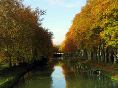 Canal du midi (keng1961) Tags: autumn trees france water automne reflections canal agua eau rboles frana arbres otoo francia garonne channel aigua reflejos tardor canaldumidi reflexes garona hautegaronne midipyrnes keng1961