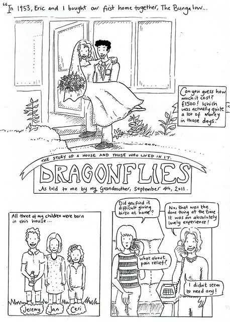 Dragonflies page 1 - The Story of a House