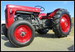 Massey Ferguson 35 (Dusty_73) Tags: tractor vintage farm equipment machinery ag mf agriculture 35 ferguson massey