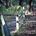 Five Rivers - Delmar, NY - 2010, Nov - 04.jpg by sebastien.barre