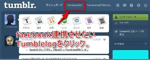 tumblr-fb1
