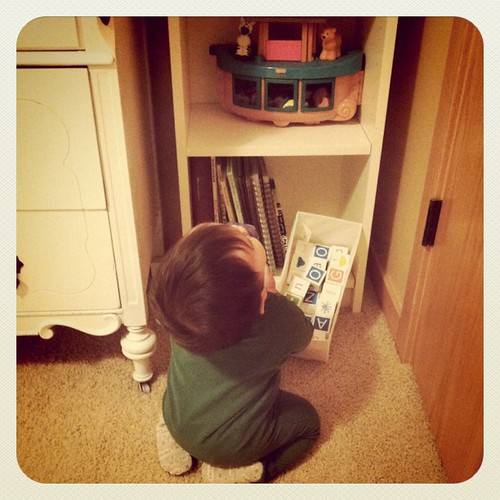 He's discovered the toys on his bookshelf.