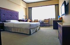 大連 ロイヤル ホテル
