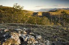 TLC的Flat Rock保護區(照片來源:TLC網站)