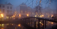 Leiden in the Mist