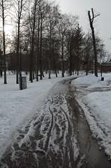 DR1_8290 (Riku Kettunen) Tags: primavera suomi finland spring helsinki fin equinox finlandia arabianranta equinoccio kevat arabianrantapuisto kevatpaivantasaus