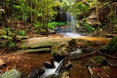 Adelina Falls Lawson (sachman75) Tags: longexposure landscape australia bluemountains waterfalls nsw newsouthwales polarizer lawson waterflow polariser canon1740mmf4 adelinafalls 5dmark2 canon5dmarkii singhrayvarinduo