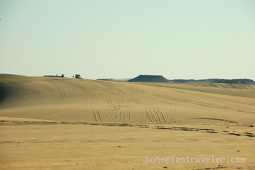 desert tire tracks outside Siwa Oasis
