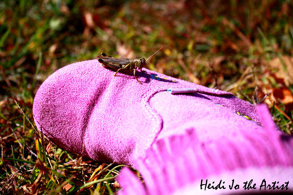 Grasshopper on Purple Boot in Nature