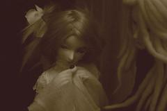 Speechless Story 14 (Nylh) Tags: mantis bjd asylum minotaure dollmate transcendb smm1