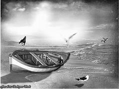 un bello recuerdo (soult1) Tags: textura mar barca arte bn sensational gaviotas composicion