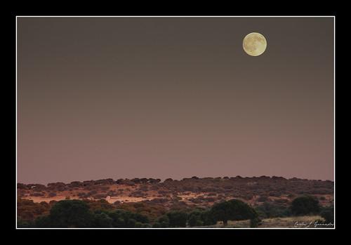 La luna en el encinar by Carlos_JG