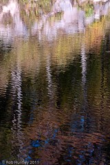 Beaver Pond Reflections (Rob Huntley Photography - Ottawa, Ontario, Canada) Tags: autumn canada colour water colors reflections pond colours fallcolor quebec beaver gatineau qc gatineaupark pq huntley beaverpond gatineauhills robhuntley robhuntleyphotography