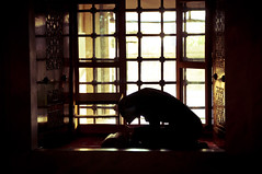 Woman Praying, Turkey (Brave Lemming) Tags: light woman window silhouette turkey asia europe femme islam praying türkiye istanbul mosque adventure bluemosque touring biketour sultanahmet mosquée worldtravel bicycletour prière mosquéebleue westernturkey bravelemming