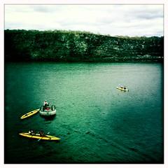 kayak regatta
