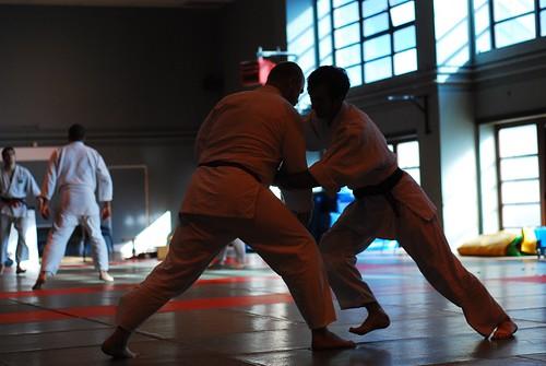 6299414101 760d45097a London & Hove Shodokan Aikido Festival 2011