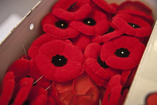 poppy pins