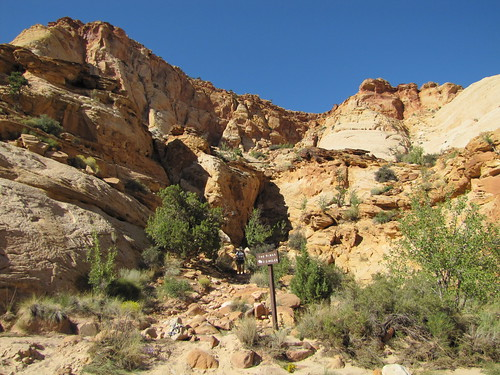 IMG_3438_Capitol_Gorge_Capitol_Reef_National_Park