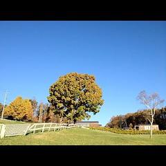 最終日、快晴です。空が青い!
