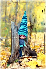 Autumn Gnome (307/365)