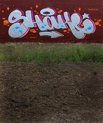 SHAKE (Fresh Green) Tags: was explore shake chuck exchange 2011 rtr westwest daktory with2flash explorednov2011
