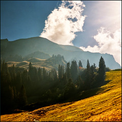 Late sun (Katarina 2353) Tags: landscape paisaje nature autumn fall mountain hills fields france megeve montdarbois travel nikon vacation alps yellow tress wood magical sunset light over field fog mist europe europa vertorama katarina2353 katarina stefanovic mygearandme mygearandmepremium mygearandmebronze mygearandmesilver mygearandmegold mygearandmeplatinum photography film tjkp priroda katarinastefanovic latesun flickr gettylicence image pejza paysage