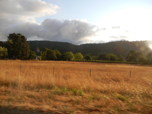 Sonoma, California _ 7725