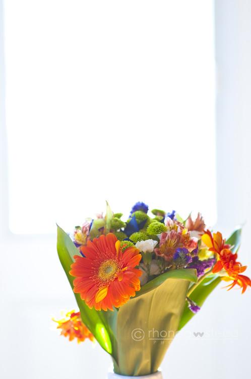 Week 29: Flower