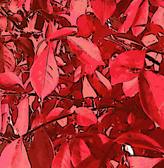 Scarlet Leaves (Digital Woodcut) by randubnick
