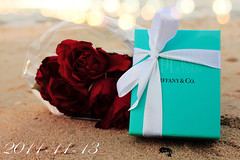 2011-11-13 (Jawaher Bnt Hassn) Tags: sea rose gift tiffanyco