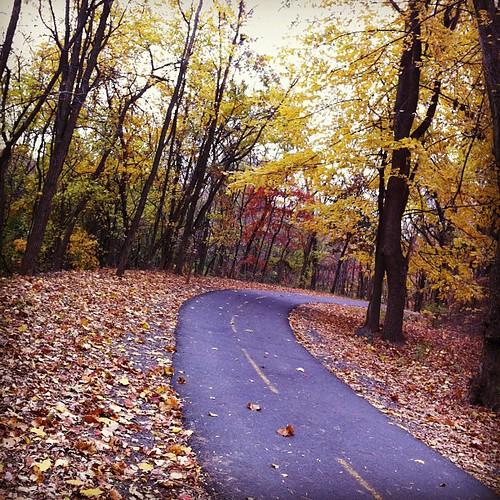 Happy trails (Four Mile Run)