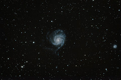 Galaxie du Moulinet (M101)