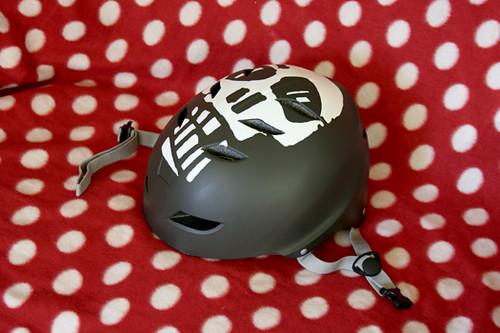 kitten-helmetb4