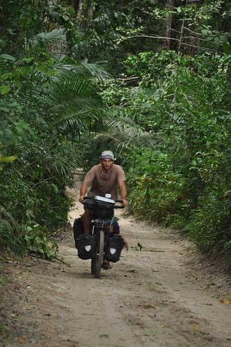 Through Ngezi Forest