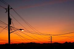 Day 248/365 (cascade sunrise) (FaithBishop) Tags: seattle sky silhouette sunrise streetlight cascades telephonelines telephonepole telephonewires 365project