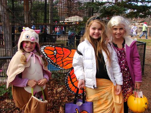 Zoo Boo 2011
