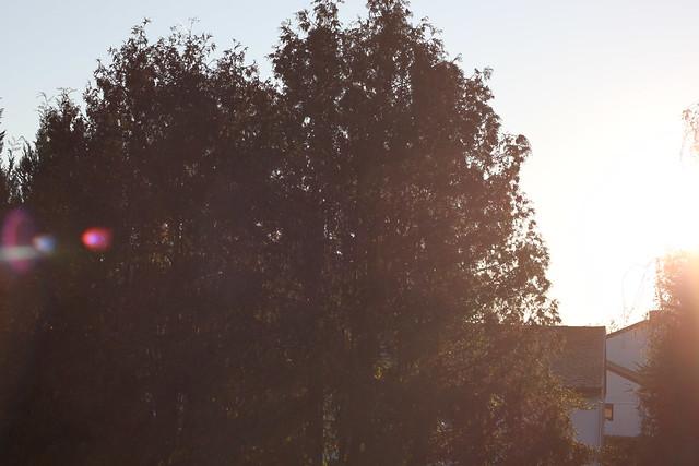 octobre 5 081