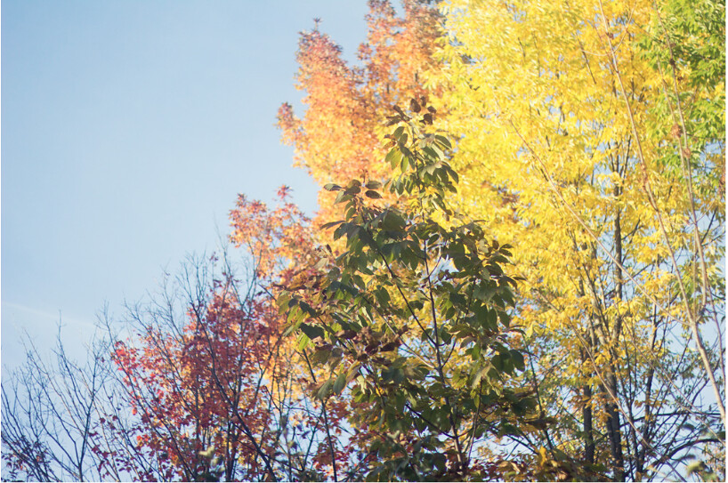 Screen Shot 2011-10-16 at 10.43.07 PM