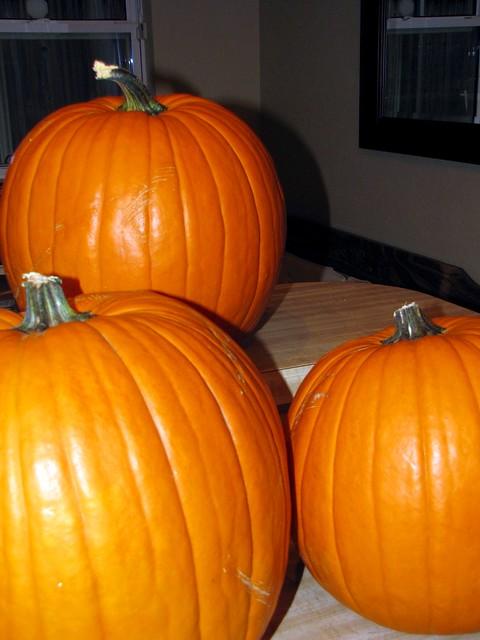 Pumpkin Carving: Jayhawk-O-Lantern