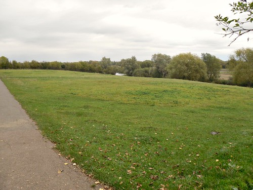 Grantchester Meadows