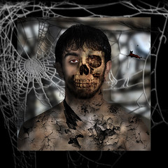 son's death (Encarni Mancebo y Lpez) Tags: portrait halloween broken cat photoshop skull spider retrato negro spiderweb textures gato undead montaje araa texturas roto calavera teladearaa muertoviviente canimancebo unaialisnmancebo undeadcreature