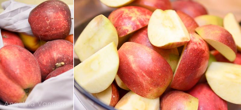 Apple Sauce, Pot Pie, and Carrots3-Edit
