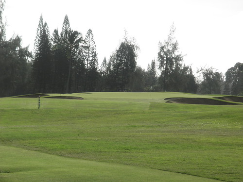 Turtle Bay Colf Course 055