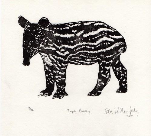 tapirBaby518