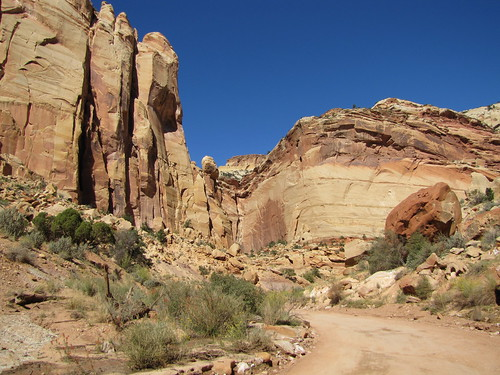 IMG_3413_Capitol_Reef_National_Park