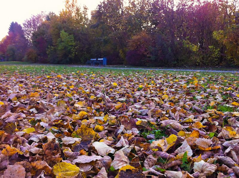 Herbstphase 2