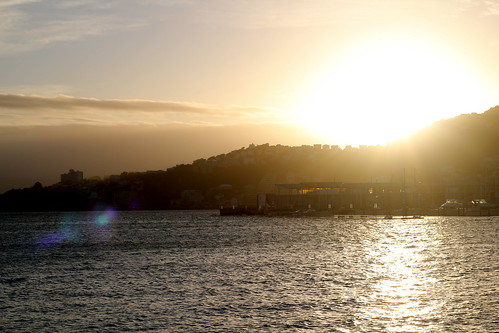 Thursday: dawn over the harbour