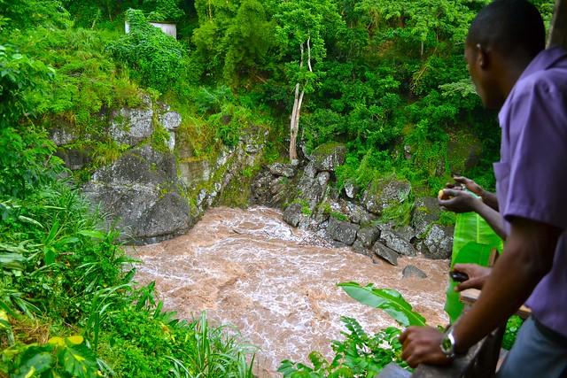 jamaicanriver