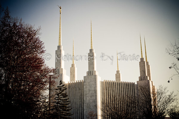 Washington D.C. Vintage LDS Temple Prints -2-2